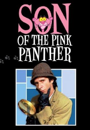 Сын розовой пантеры / Son of the Pink Panther (1993/DVDRip/DVDRip-AVC/HDTVRip-AVC(720p))