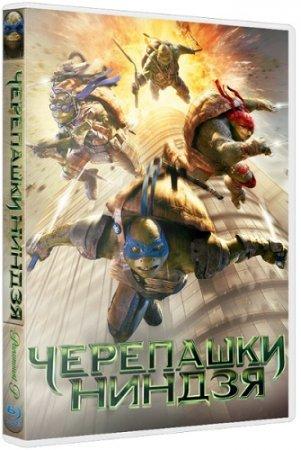 Черепашки-ниндзя / Teenage Mutant Ninja Turtles (2014) WEB-DLRip